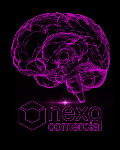 Cerebro Taller Neuroseduccion